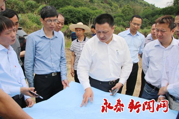 县领导赴葛岭镇现场调研检查项目建设情况